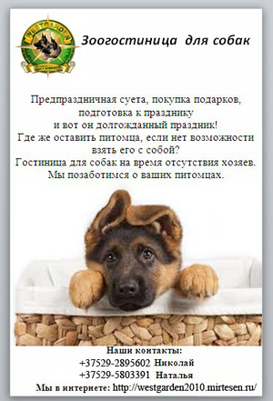 Гостиница для собак 'Happy Dog'